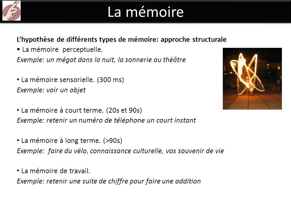 La mémoire Lhypothèse de différents types de mémoire: approche structurale La mémoire perceptuelle. Exemple: un mégot dans la nuit, la sonnerie au thé