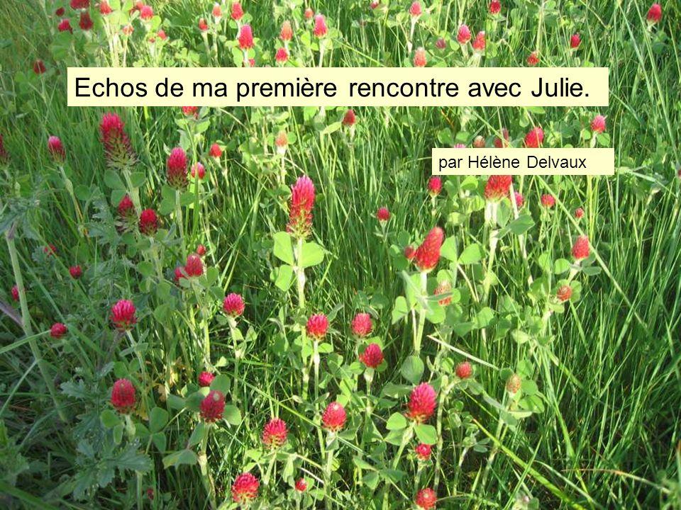 Echos de ma première rencontre avec Julie. par Hélène Delvaux