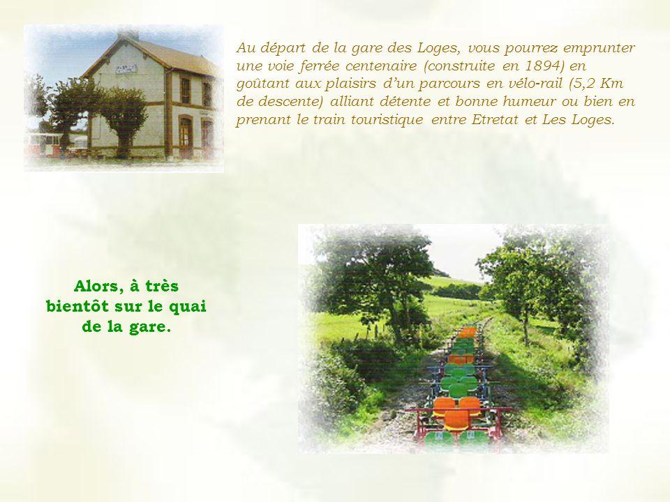 Au départ de la gare des Loges, vous pourrez emprunter une voie ferrée centenaire (construite en 1894) en goûtant aux plaisirs dun parcours en vélo-rail (5,2 Km de descente) alliant détente et bonne humeur ou bien en prenant le train touristique entre Etretat et Les Loges.