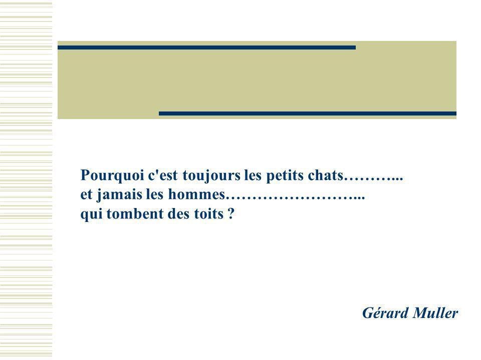 G Muller Rennes 2005 Gérard Muller Le petit chat est mort……………….. Il est tombé du toit et c'est comme ça………………………..……………………………. Il a glissé sur j'sais