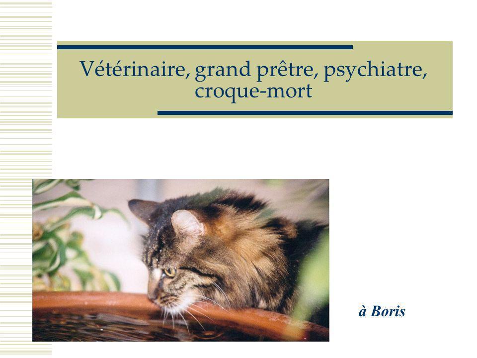 Pourquoi c'est toujours les petits chats………... et jamais les hommes……………………... qui tombent des toits ?