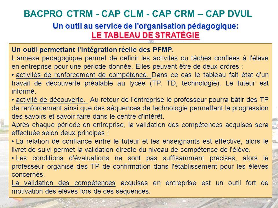 BACPRO CTRM - CAP CLM - CAP CRM – CAP DVUL Un outil au service de l'organisation pédagogique: LE TABLEAU DE STRATÉGIE LE TABLEAU DE STRATÉGIE Un outil
