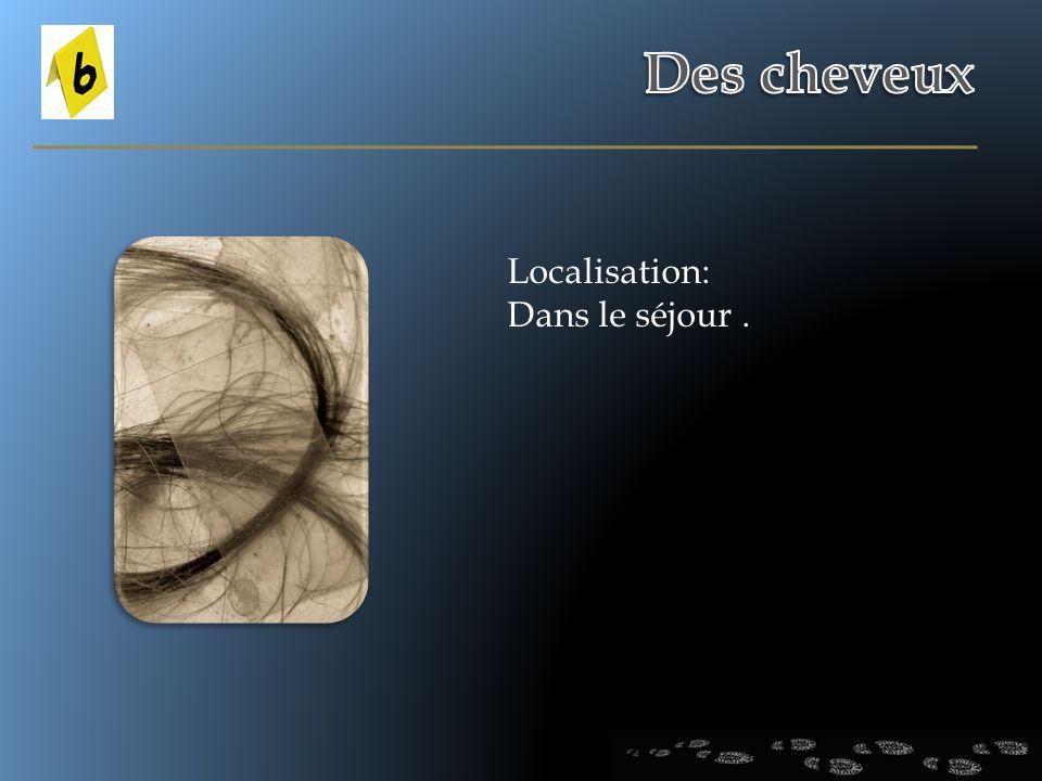 Localisation: Dans le séjour.