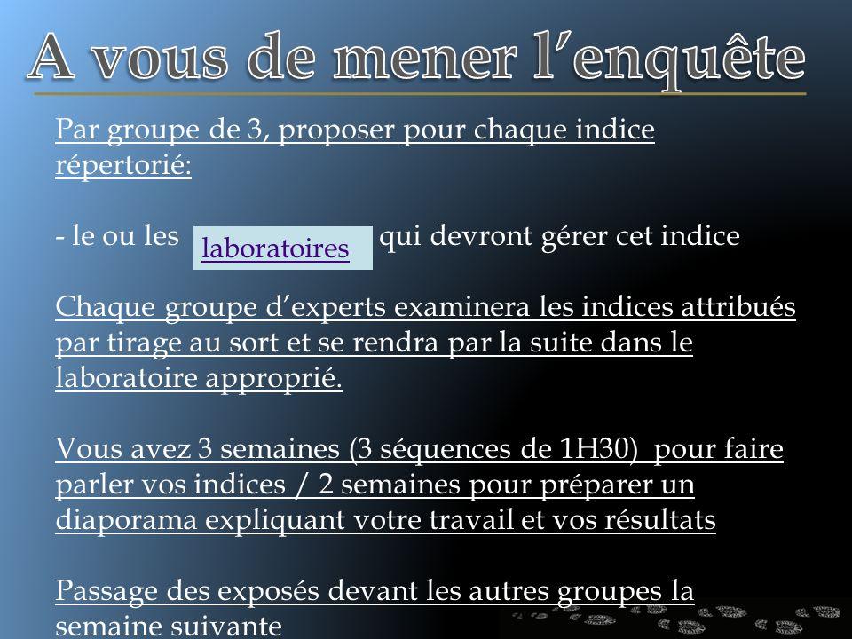 Par groupe de 3, proposer pour chaque indice répertorié: - le ou les qui devront gérer cet indice Chaque groupe dexperts examinera les indices attribu