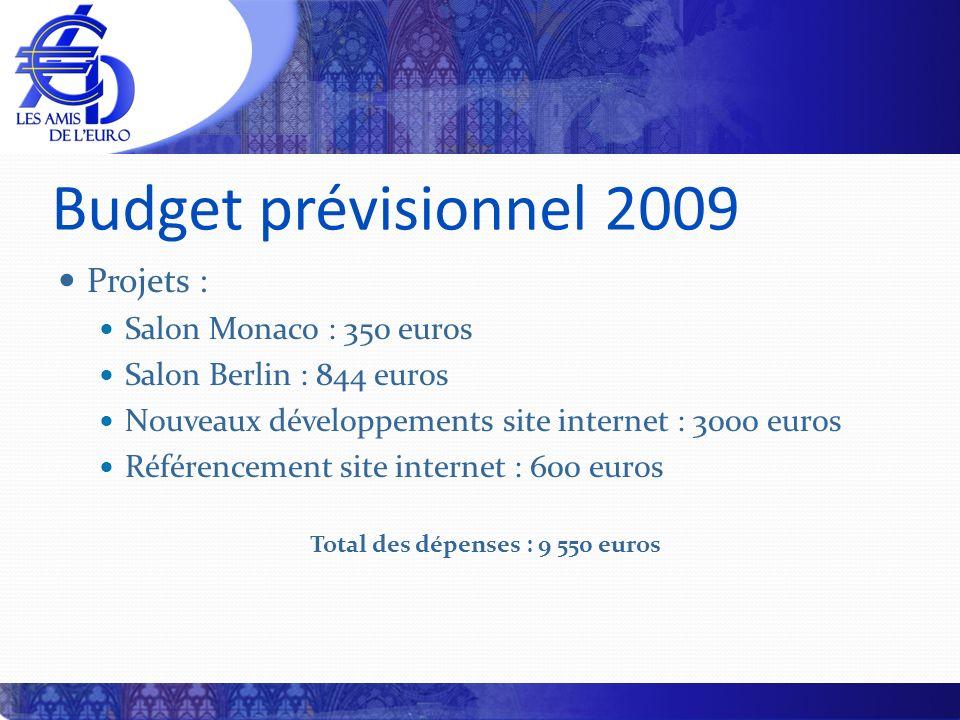 Budget prévisionnel 2009 Projets : Salon Monaco : 350 euros Salon Berlin : 844 euros Nouveaux développements site internet : 3000 euros Référencement