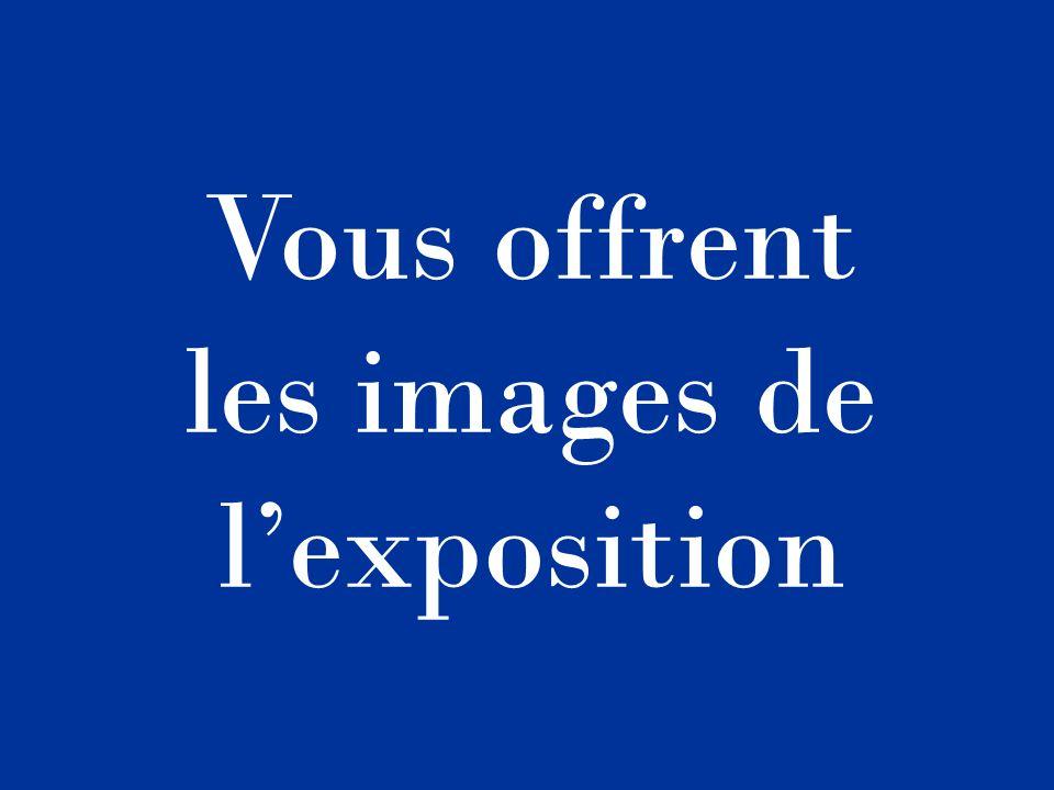 Les Amis du Vieux Villeneuve-sur-Yonne