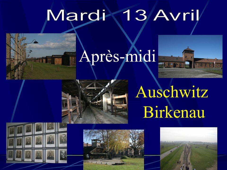 Après-midi Auschwitz Birkenau