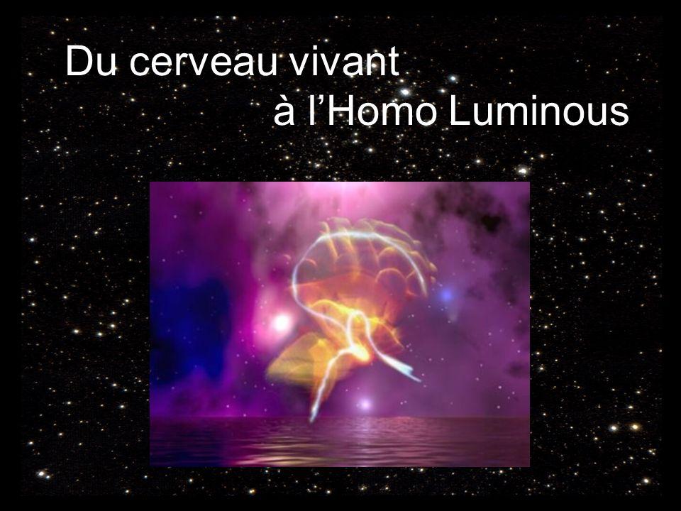 Du cerveau vivant à lHomo Luminous