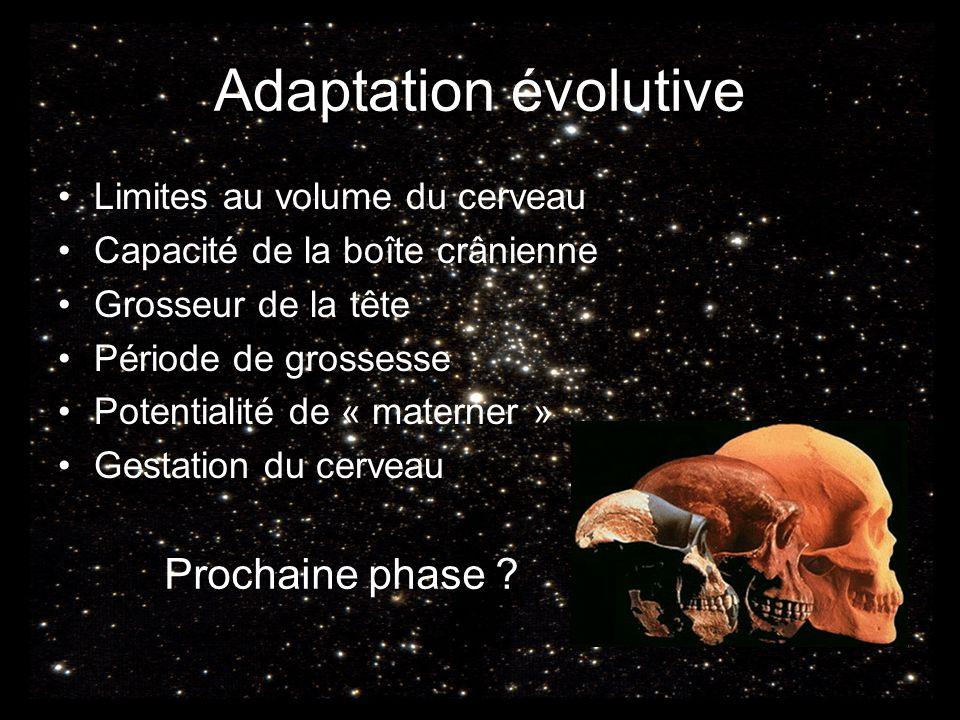 Adaptation évolutive Limites au volume du cerveau Capacité de la boîte crânienne Grosseur de la tête Période de grossesse Potentialité de « materner » Gestation du cerveau Prochaine phase ?