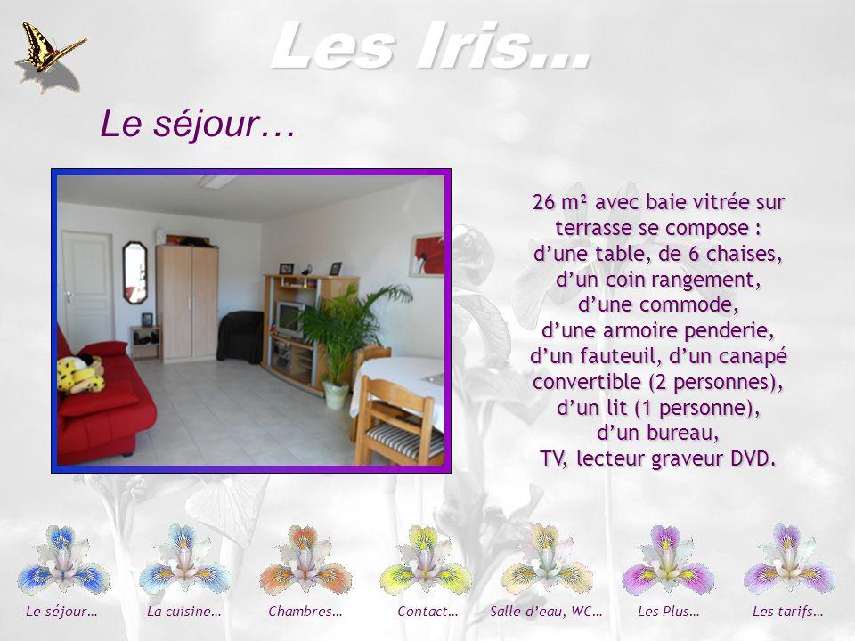 Les Iris… La cuisine Véranda… Également sur terrasse, possède TV, kitchenette (plaques électriques, réfrigérateur avec compartiment congélateur) mini four, micro-ondes, table, chaises, rangements et vaisselle complète.