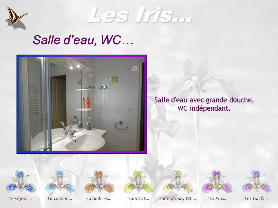 Les Iris… 2 chambres : avec chacune un lit de 2 personnes, armoire penderie, tables de chevet bureau et 2 chaises.