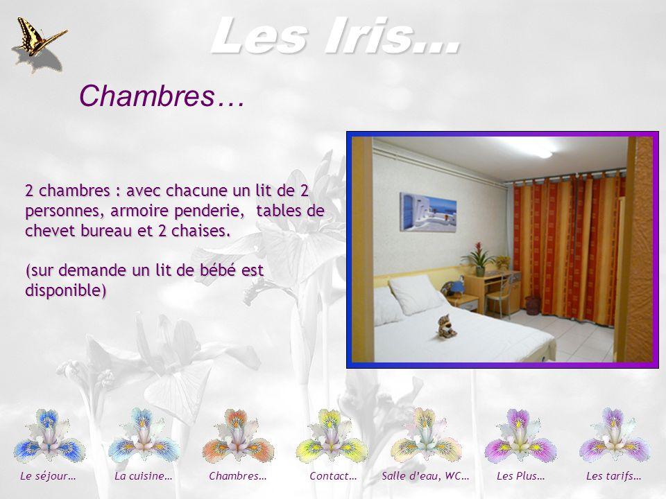 Les Plus… Les Iris… Dépendance attenant à la cuisine avec lave-vaisselle, grand réfrigérateur, congélateur, buanderie avec bac et lave- linge et sèche-linge.
