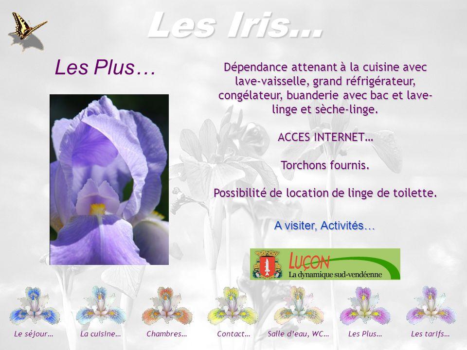 Les Iris… Arrivées : le samedi à partir de 16 heures Départs : le samedi au plus tard à midi.
