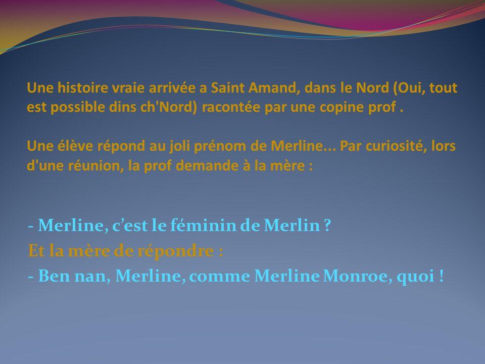 Une histoire vraie arrivée a Saint Amand, dans le Nord (Oui, tout est possible dins ch Nord) racontée par une copine prof.