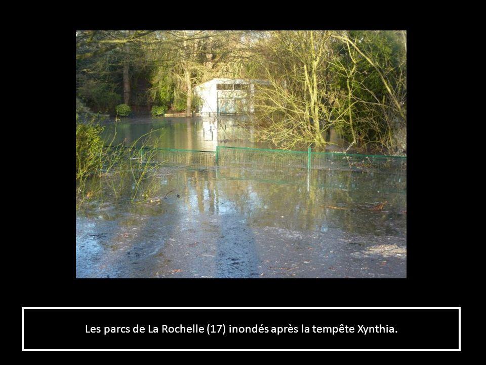 Les parcs de La Rochelle (17) inondés après la tempête Xynthia.