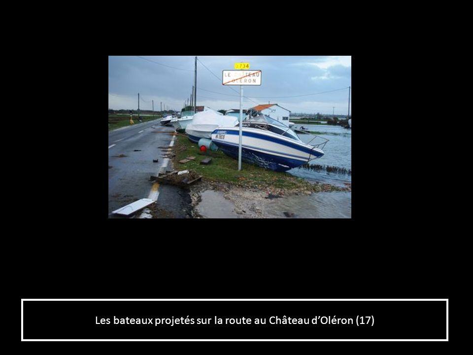 Les bateaux projetés sur la route au Château dOléron (17)