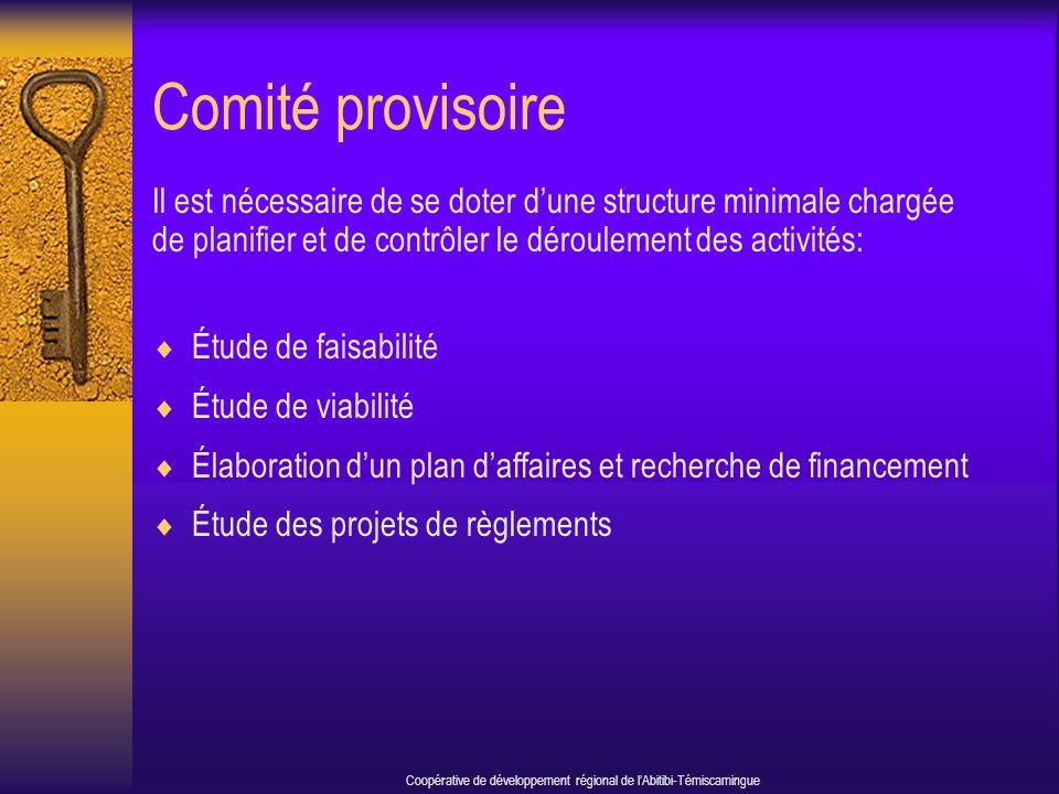 Comité provisoire Il est nécessaire de se doter dune structure minimale chargée de planifier et de contrôler le déroulement des activités: Étude de faisabilité Étude de viabilité Élaboration dun plan daffaires et recherche de financement Étude des projets de règlements Coopérative de développement régional de lAbitibi-Témiscamingue