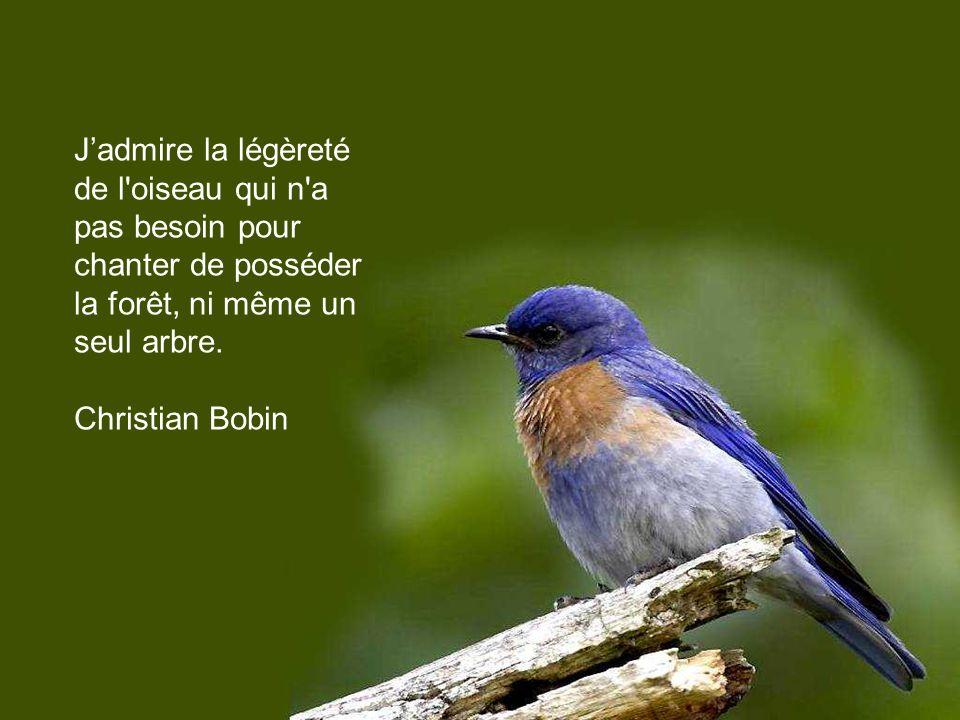 Un homme sans patrie, c est un oiseau sans chanson. Proverbe russe