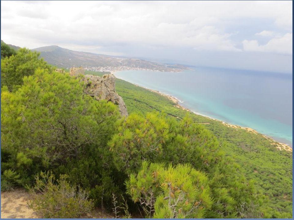 Pilau vient du maltais pulau qui signifie « île ».