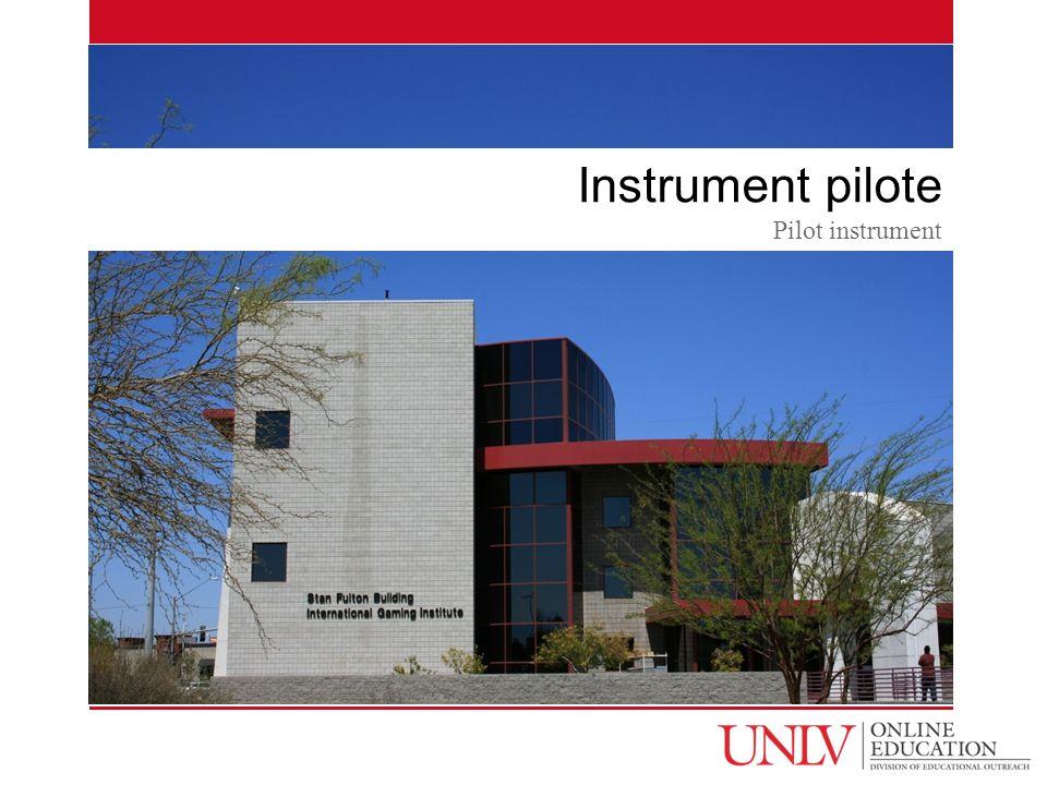 Instrument pilote Pilot instrument