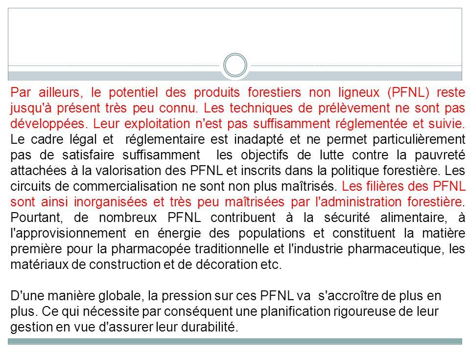 Par ailleurs, le potentiel des produits forestiers non ligneux (PFNL) reste jusqu'à présent très peu connu. Les techniques de prélèvement ne sont pas
