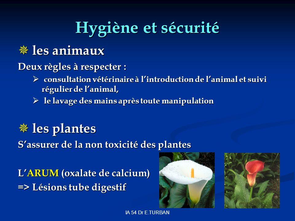 IA 54 Dr E.TURBAN Hygiène et sécurité les animaux les animaux Deux règles à respecter : consultation vétérinaire à lintroduction de lanimal et suivi régulier de lanimal, consultation vétérinaire à lintroduction de lanimal et suivi régulier de lanimal, le lavage des mains après toute manipulation le lavage des mains après toute manipulation les plantes les plantes Sassurer de la non toxicité des plantes LARUM (oxalate de calcium) => Lésions tube digestif