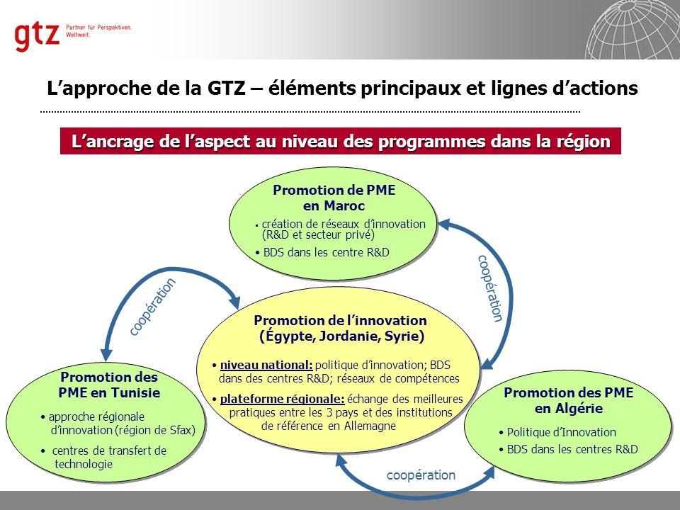 Département 4121 « Politique Économique et Promotion du Secteur Privé » Manfred Horr Folie 9 Promotion de PME en Maroc création de réseaux dinnovation
