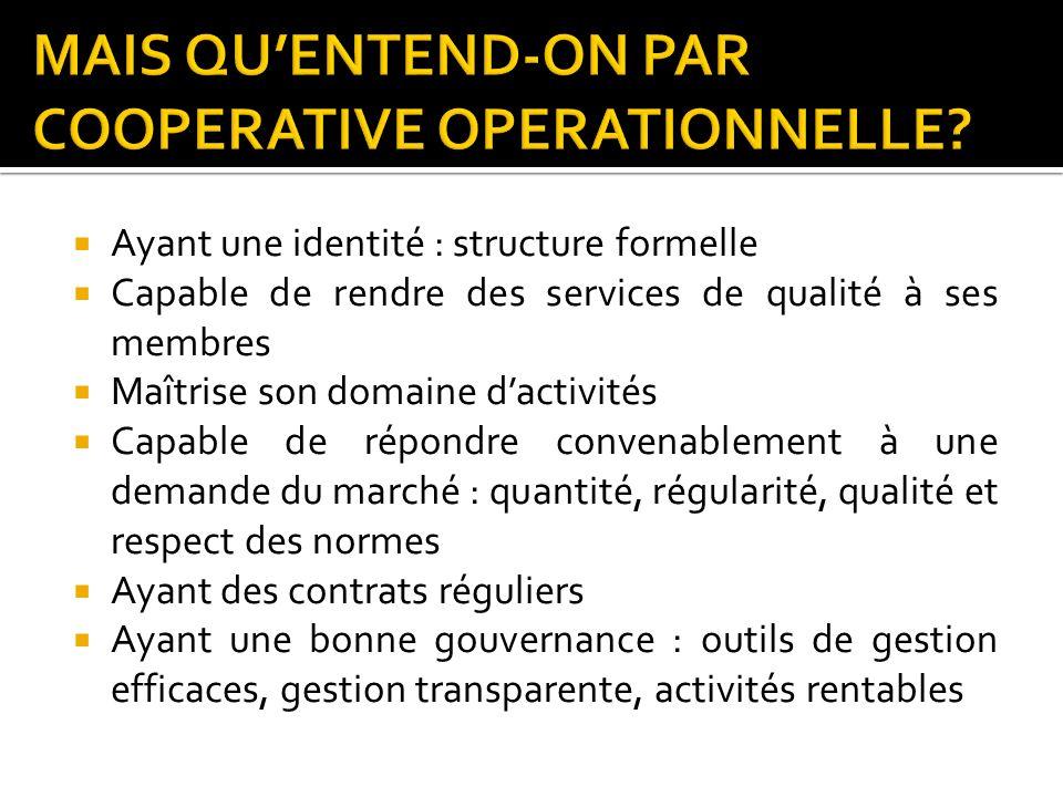 Ayant une identité : structure formelle Capable de rendre des services de qualité à ses membres Maîtrise son domaine dactivités Capable de répondre co