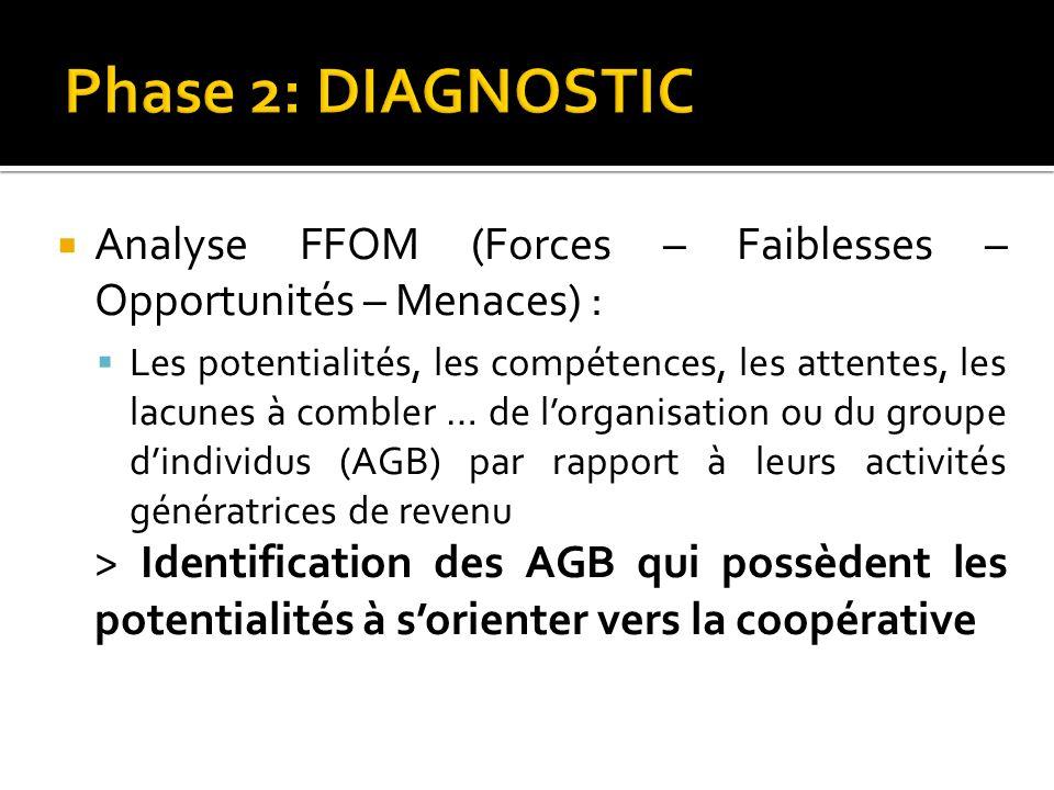 Analyse FFOM (Forces – Faiblesses – Opportunités – Menaces) : Les potentialités, les compétences, les attentes, les lacunes à combler … de lorganisati