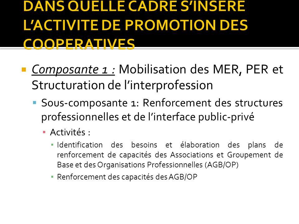 Composante 1 : Mobilisation des MER, PER et Structuration de linterprofession Sous-composante 1: Renforcement des structures professionnelles et de li