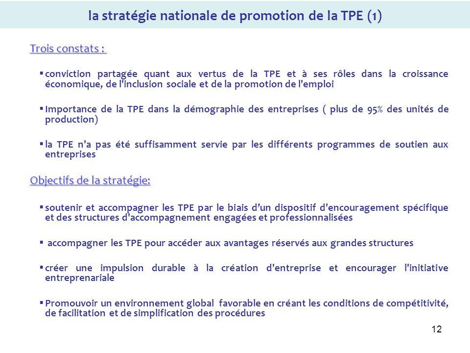 12 la stratégie nationale de promotion de la TPE (1) Trois constats : Trois constats : conviction partagée quant aux vertus de la TPE et à ses rôles d