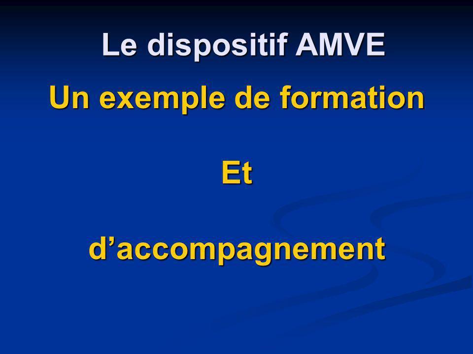 Le dispositif AMVE Un exemple de formation Etdaccompagnement