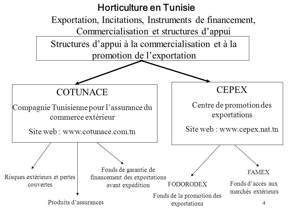 4 Exportation, Incitations, Instruments de financement, Commercialisation et structures dappui Horticulture en Tunisie Structures dappui à la commerci