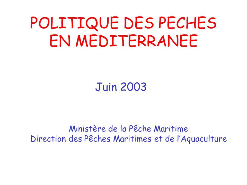 POLITIQUE DES PECHES EN MEDITERRANEE Juin 2003 Ministère de la Pêche Maritime Direction des Pêches Maritimes et de lAquaculture