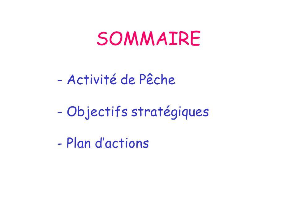 SOMMAIRE - Activité de Pêche - Objectifs stratégiques - Plan dactions