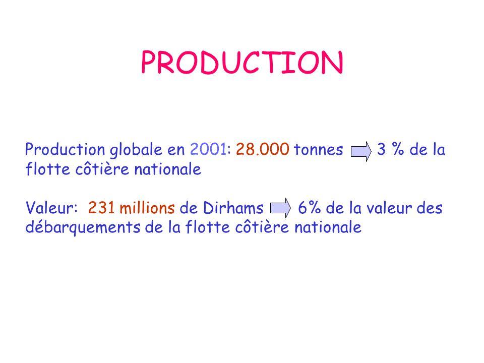 PRODUCTION Production globale en 2001: 28.000 tonnes 3 % de la flotte côtière nationale Valeur: 231 millions de Dirhams 6% de la valeur des débarquements de la flotte côtière nationale