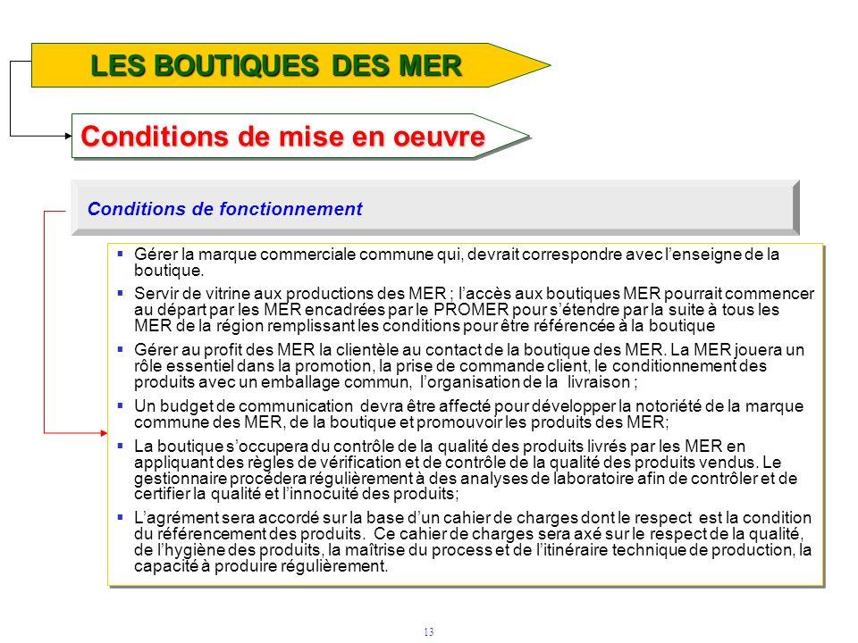 13 Conditions de mise en oeuvre LE FONDS DAPPUI TECHNOLOGIQUE LES BOUTIQUES DES MER Conditions de fonctionnement Gérer la marque commerciale commune q
