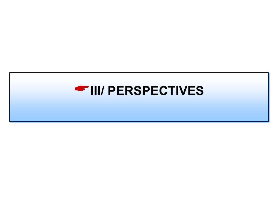 III/ PERSPECTIVES
