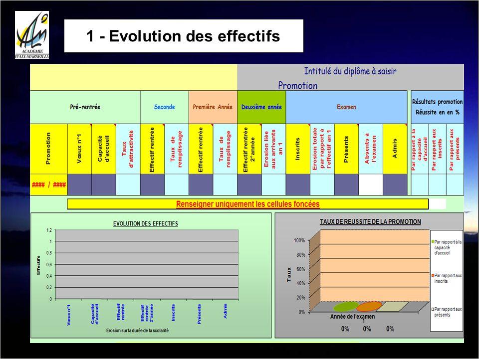 1 - Evolution des effectifs