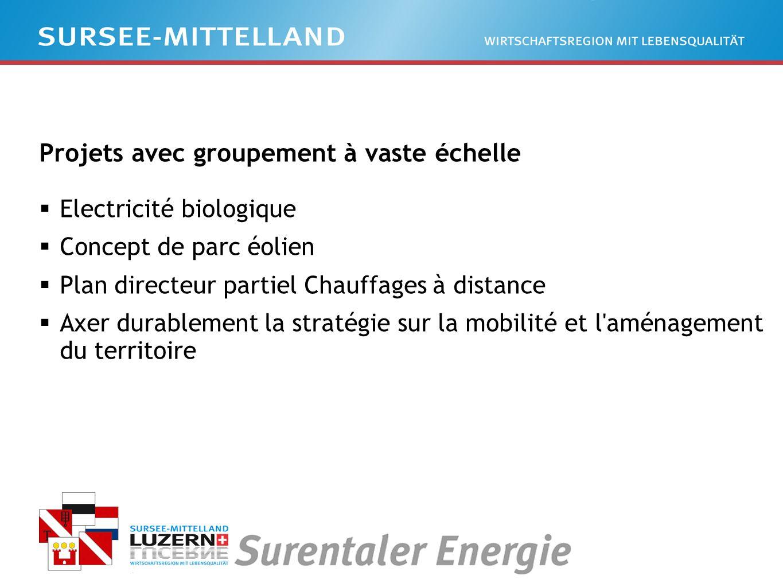 Projets avec groupement à vaste échelle Electricité biologique Concept de parc éolien Plan directeur partiel Chauffages à distance Axer durablement la stratégie sur la mobilité et l aménagement du territoire