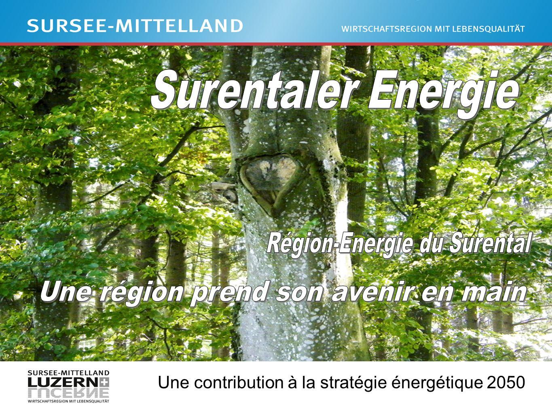 Une contribution à la stratégie énergétique 2050