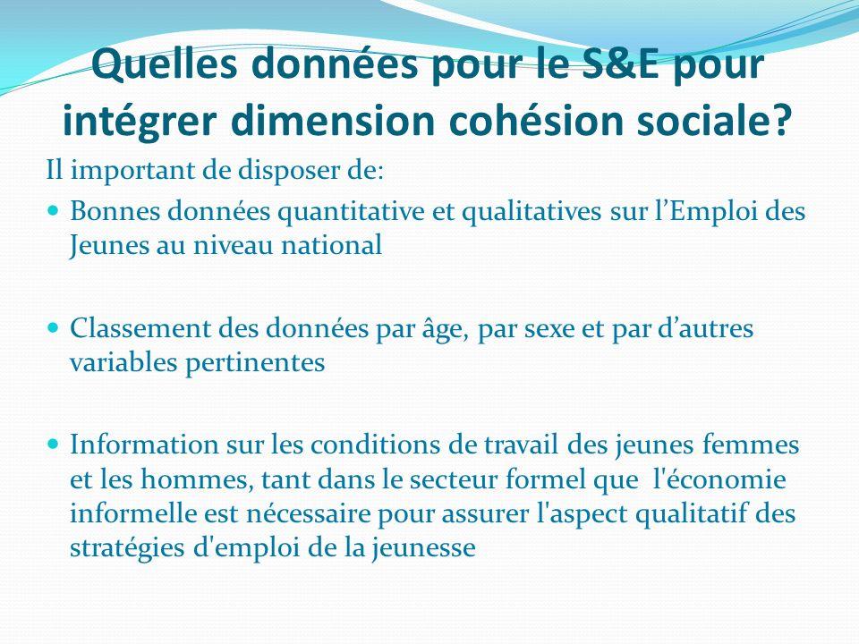 Quelles données pour le S&E pour intégrer dimension cohésion sociale? Il important de disposer de: Bonnes données quantitative et qualitatives sur lEm