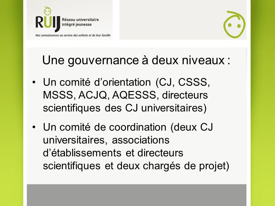 Une gouvernance à deux niveaux : Un comité dorientation (CJ, CSSS, MSSS, ACJQ, AQESSS, directeurs scientifiques des CJ universitaires) Un comité de co