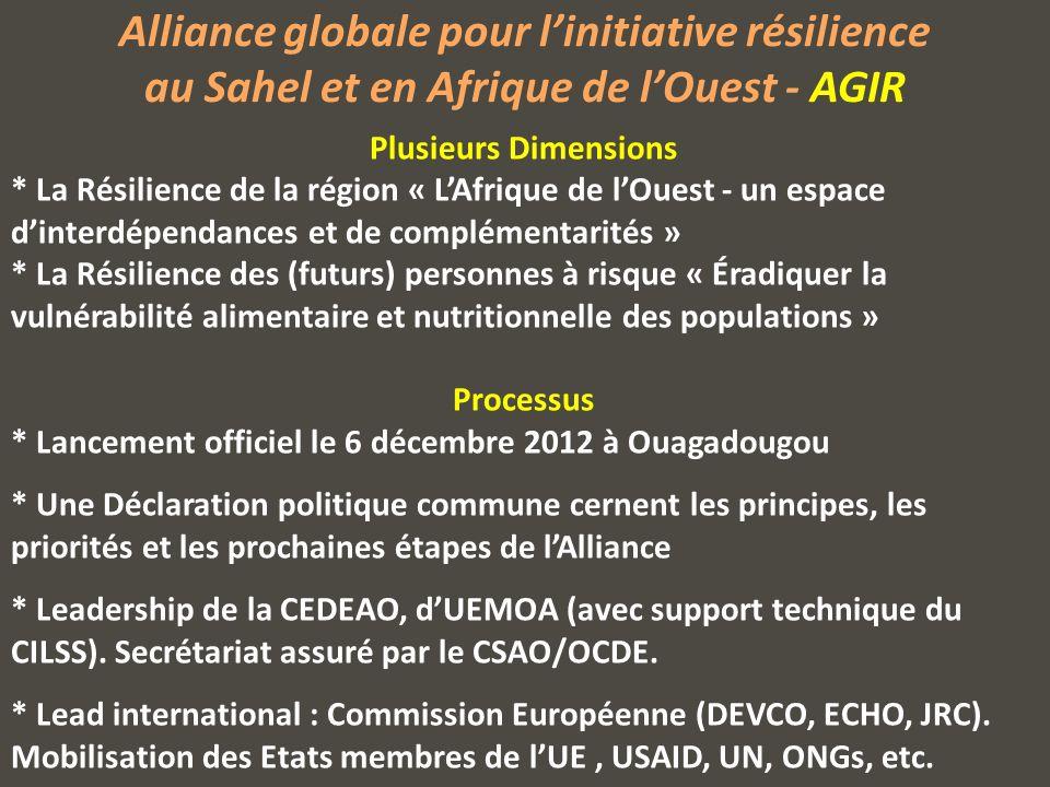 Alliance globale pour linitiative résilience au Sahel et en Afrique de lOuest - AGIR Plusieurs Dimensions * La Résilience de la région « LAfrique de lOuest - un espace dinterdépendances et de complémentarités » * La Résilience des (futurs) personnes à risque « Éradiquer la vulnérabilité alimentaire et nutritionnelle des populations » Processus * Lancement officiel le 6 décembre 2012 à Ouagadougou * Une Déclaration politique commune cernent les principes, les priorités et les prochaines étapes de lAlliance * Leadership de la CEDEAO, dUEMOA (avec support technique du CILSS).