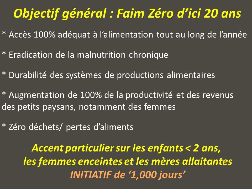 Feuille de Route Régionale – avril 2013 CSAO Paris 4 Pilliers Stratégiques: 1.Restauration et renforcement des moyens dexistence et protection sociale des plus vulnérables 2.
