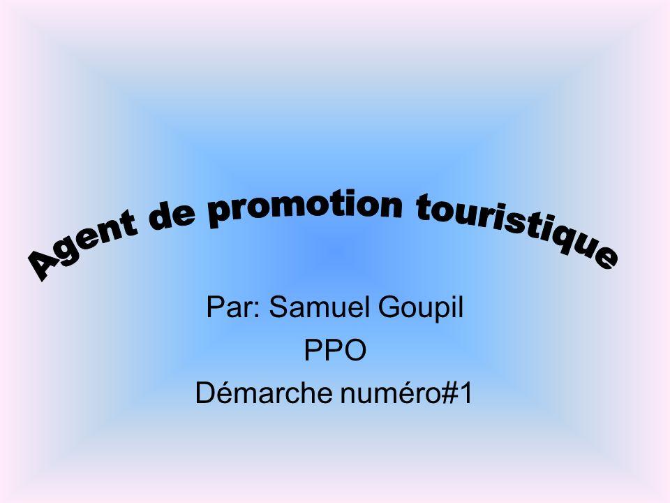 Par: Samuel Goupil PPO Démarche numéro#1