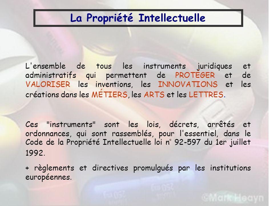La Propriété Intellectuelle Propriété Industrielle : -Brevets -Marques -Dessins et Modèles Propriété littéraire et artistique -Droits dauteur (logiciels) -Bases de données