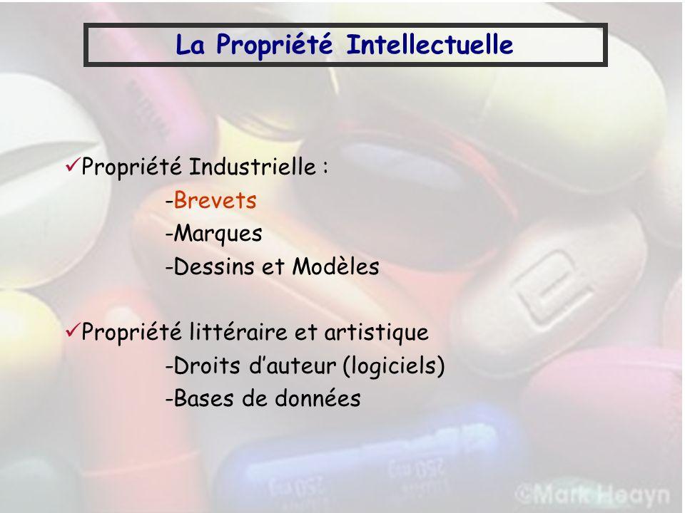 La Propriété Intellectuelle Propriété Industrielle : -Brevets -Marques -Dessins et Modèles Propriété littéraire et artistique -Droits dauteur (logicie