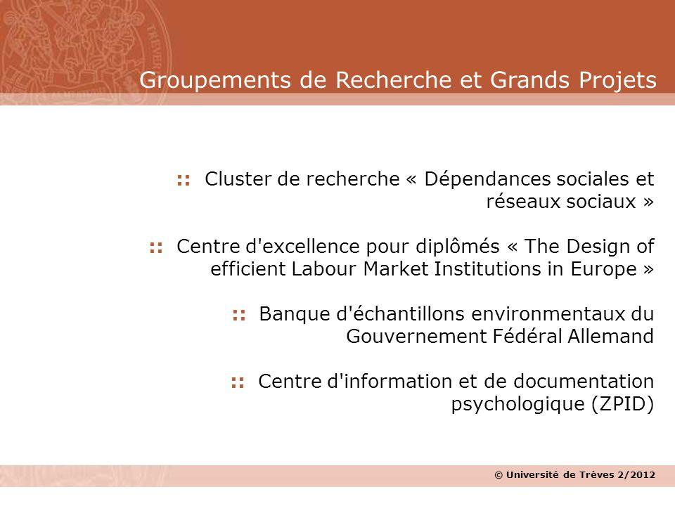 © Université de Trèves 2/2012 :: Cluster de recherche « Dépendances sociales et réseaux sociaux » :: Centre d'excellence pour diplômés « The Design of