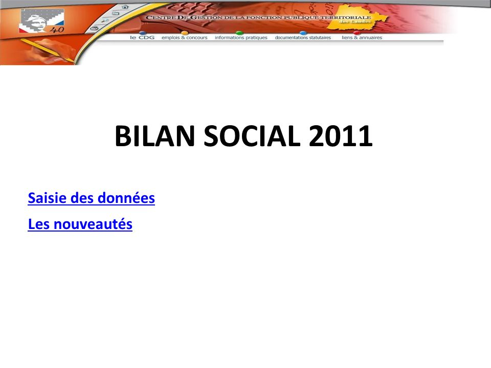 BILAN SOCIAL 2011 Saisie des données Les nouveautés